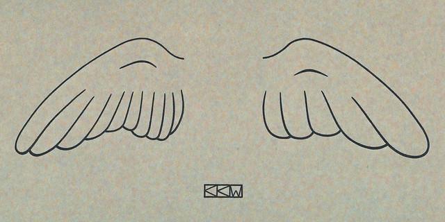 Wing Prototypes of Daedalus