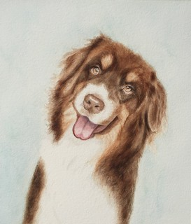 Watercolor portrait of Beamer by Adine Rotman, on Flickr