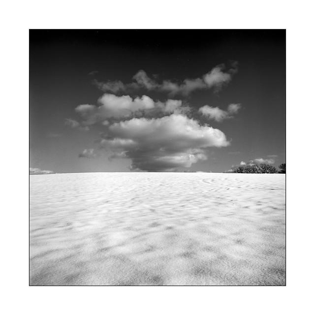 Snow Desert, film