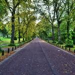 Moor Park lane