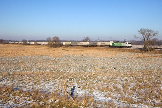DB 185 389 + Güterzug/goederentrein/freight train   - Bornim Grube
