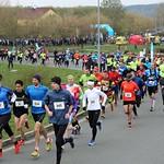foto: Krajský půlmaraton Plzeňského kraje
