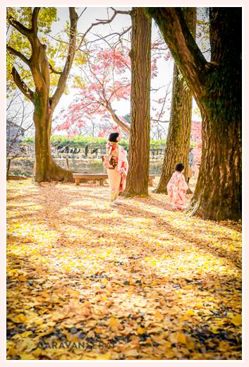 七五三のロケーション撮影 銀杏の葉に彩られた黄色の地面