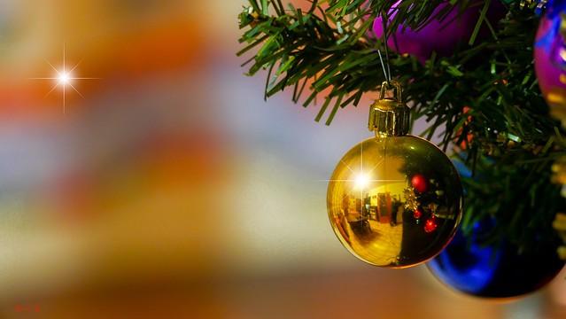Christmas - 7843