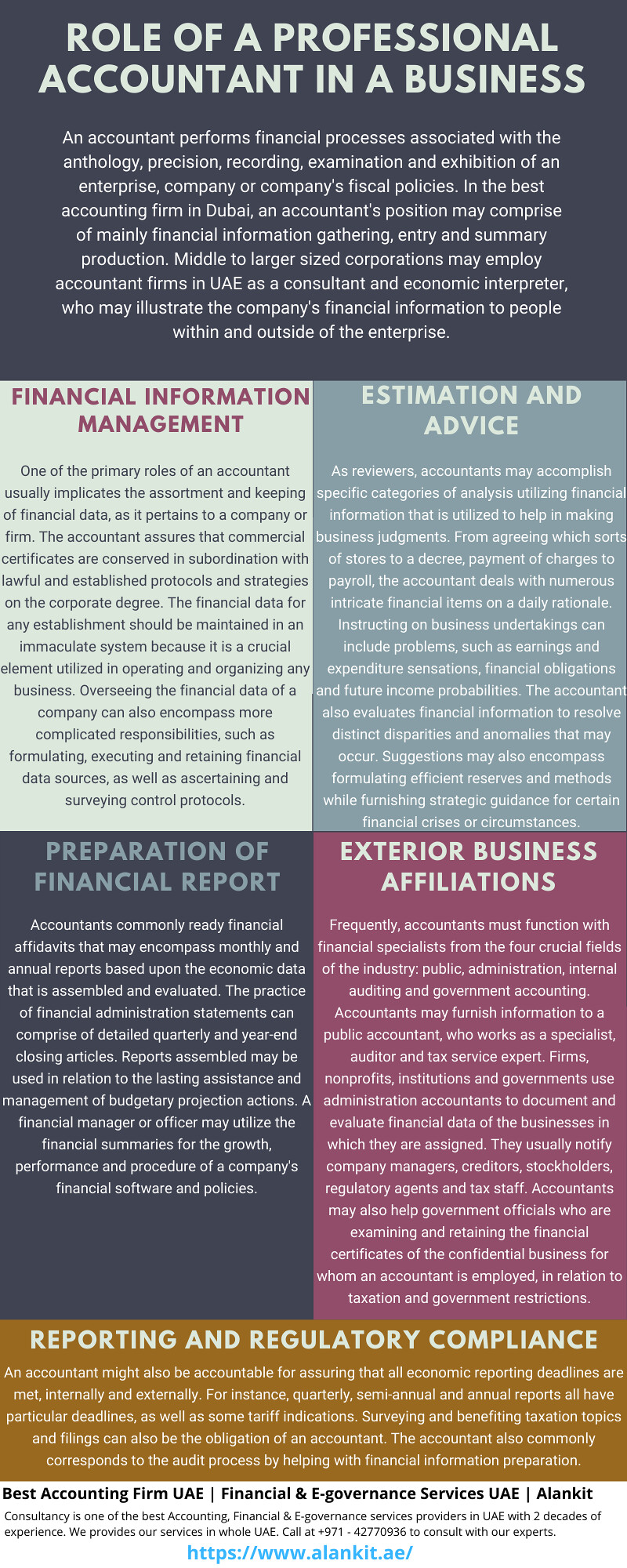 Role of a Professional Accountant in a Business