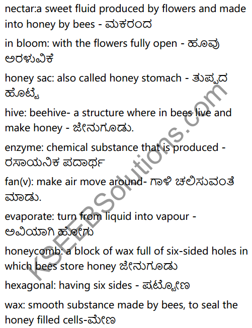 KSEEB Solutions for Class 6 English Prose Chapter 3 How do Bees Make Honey 14
