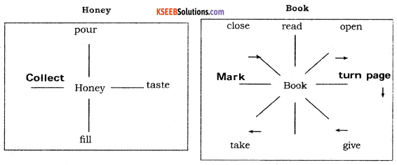 KSEEB Solutions for Class 6 English Prose Chapter 3 How do Bees Make Honey 6