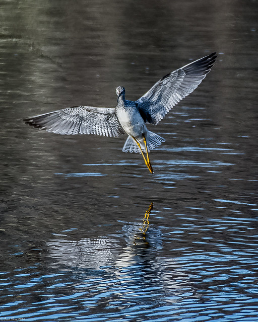 Nailing his landing