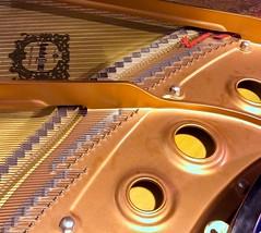 Piano 345:365 (3:1075)