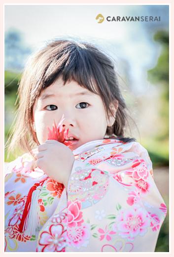 七五三 モミジの葉を握りしめる3歳の女の子