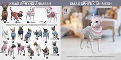 SEmotion Libellune Xmas Edition Sphynx Animesh