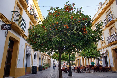 Calle Abreu