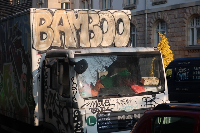 BAMBOO  #  IMG_6491