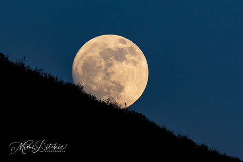 fullmoon moon lastfullmoonofthedecade fullmoonrising landscape getty gettyimages mimiditchie mimiditchiephotography
