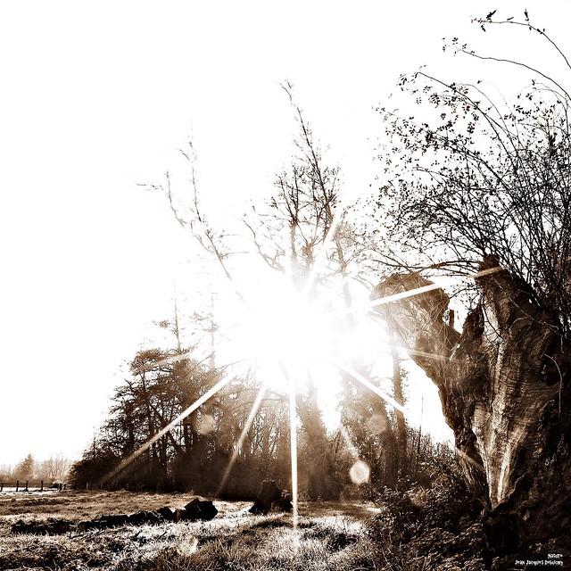 Quand on parle du soleil, on en voit les rayons.