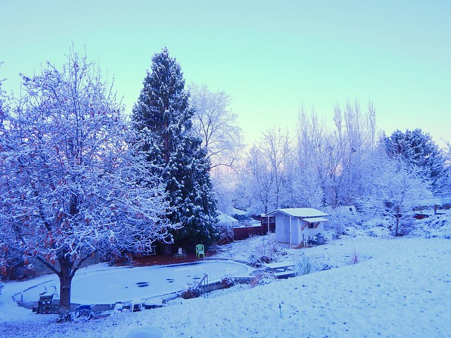 Winter in Wenatchee