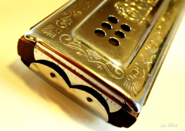 Harmonica.....Looking close....on Friday !