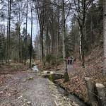 2019_12_11_Glütschbachtal_Fred (52)