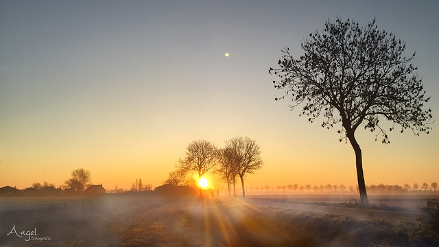 a misty december sunrise