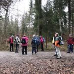 2019_12_11_Glütschbachtal_Fred (27)