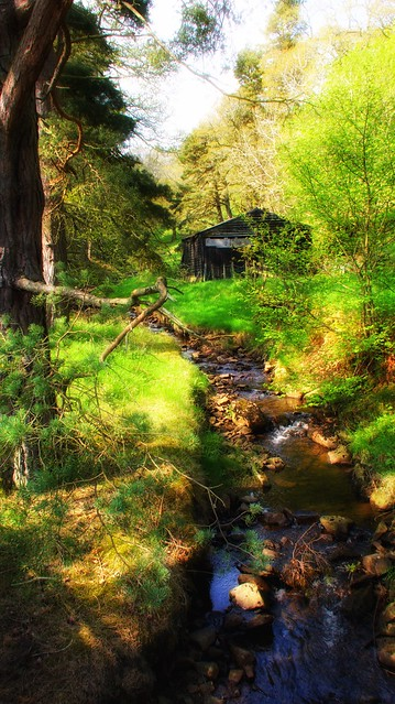 "Woodman""s Cottage"