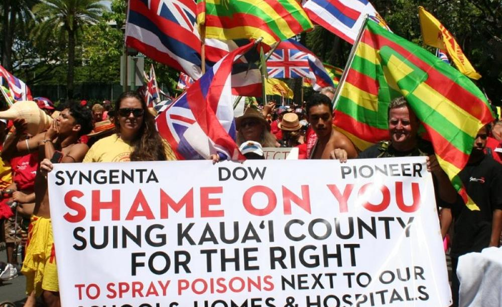 hawaii gmo protest march