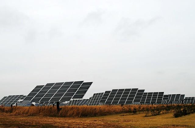 Solar Nursery - Southern, Wisconsin