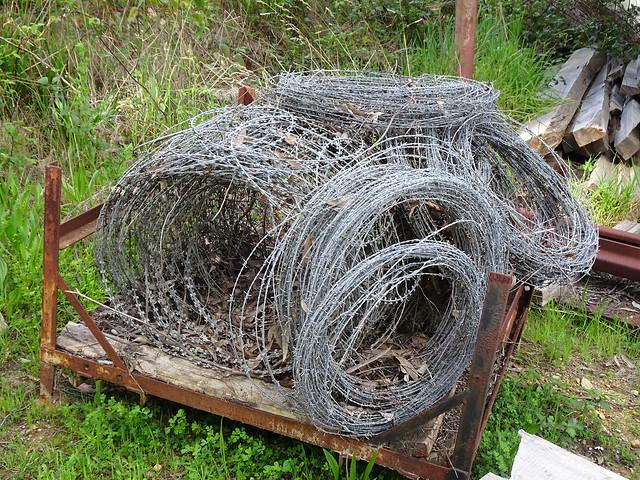 Rolls of Razor Wire