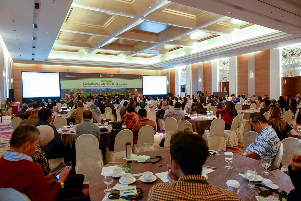 Policy dialogue: Towards Sustainable palm oil in Indonesia. JS Luwansa, Jakarta, Indonesia.