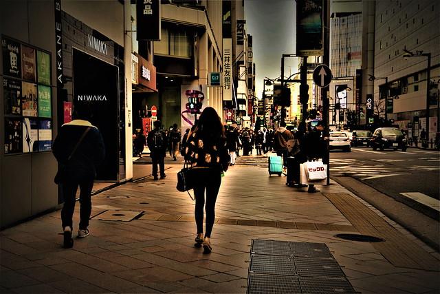 Under the Sky of Tokyo Winter