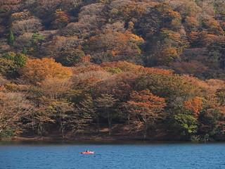 Fall colors at Lake Ashinoko, Hakone, Japan