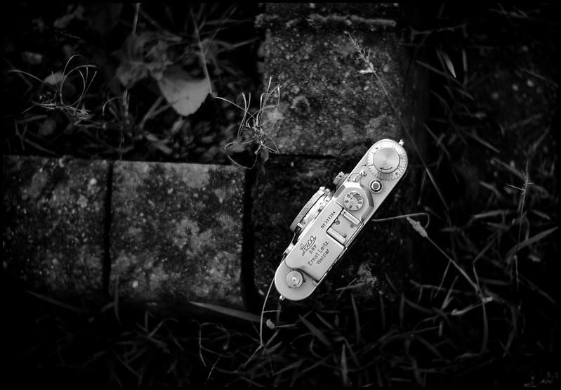 Leica iiia + Elmar 5cm  f/3.5