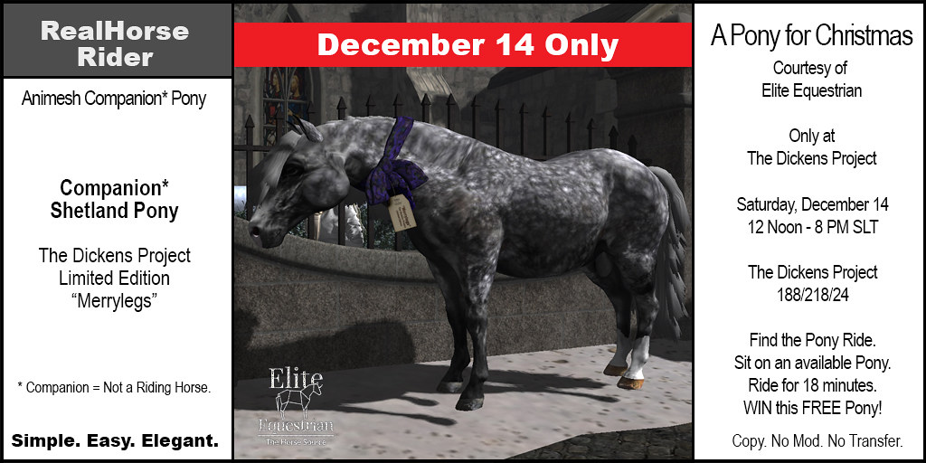 Elite Equestrian's Limited Edition Shetland Pony Companion – FREE – December 14 2019