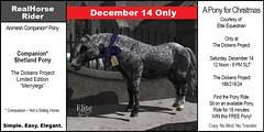 Elite Equestrian's Limited Edition Shetland Pony Companion - FREE - December 14 2019