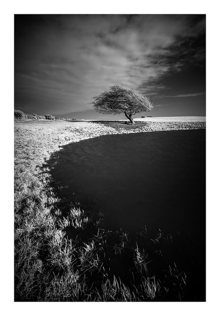 Ditchling Beacon / December 8th