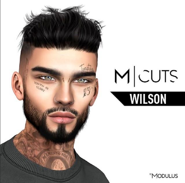 Wilson Alpha Hair  @ equal10