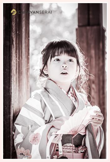 七五三 着物を着て扇子を持つ7歳の女の子