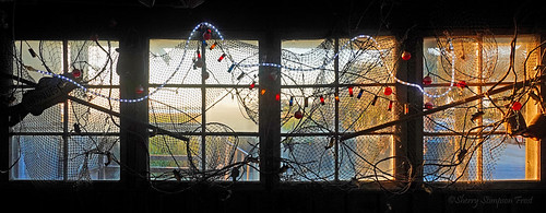 A window at Felix's Fish Camp on the causeway.  The sunlight coming thru the window caught my eye as I passed by.  Lots of neat stuff!   One of my entries in the Eastern Shore Camera Club photo share Dec. 2019 themed Members Choice.