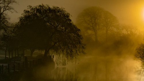 2019 backlit bybodianphotography bynickthorne cumbria england flickr flora geographicalfeatures lakedistrict newbybridge rays reflections river silhouette sun sunrise themed weather mist shadows tree