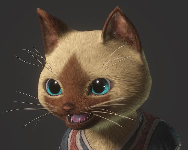 Monster Hunter - Felyne (PS4)