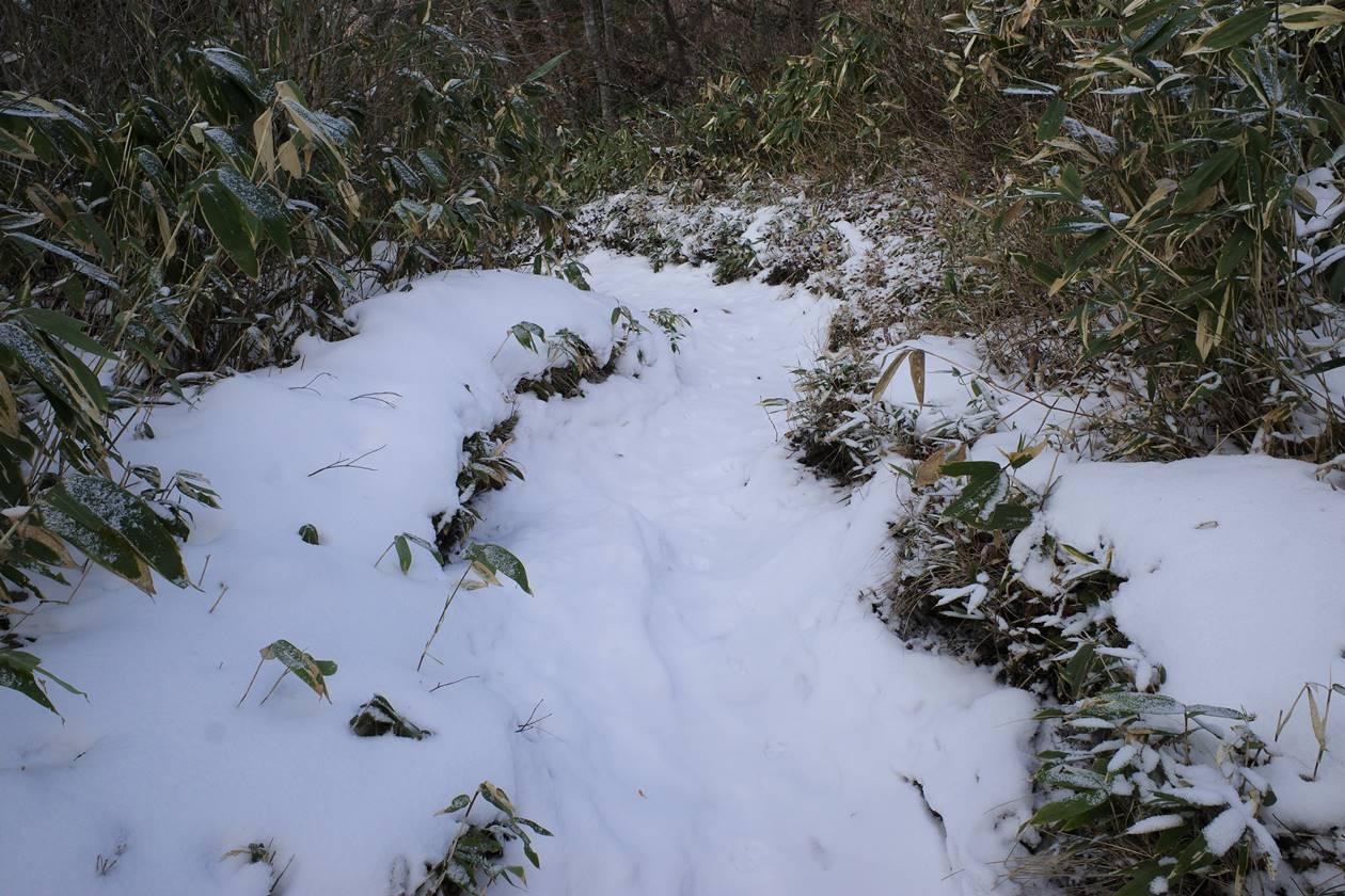 飯縄山 雪の西登山道