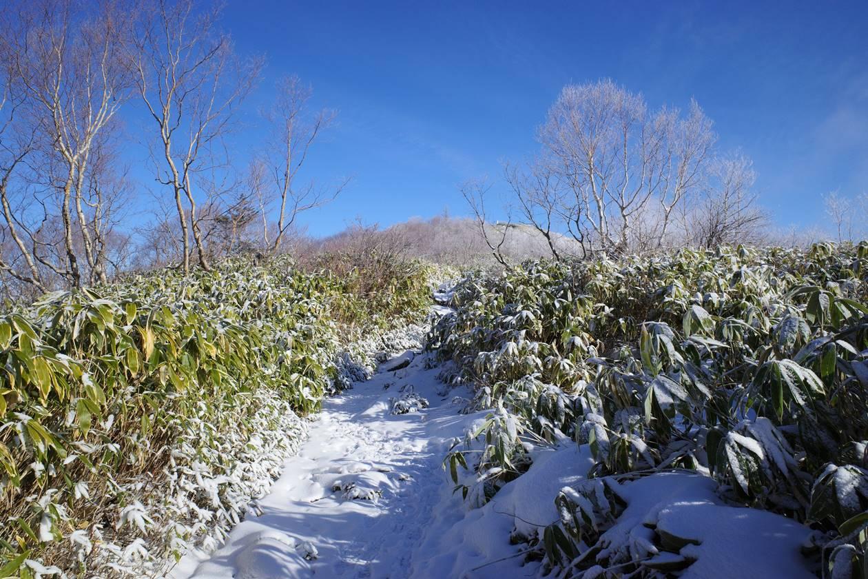飯縄山 雪の山頂稜線