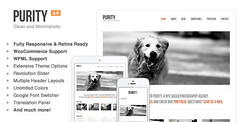 Purity: Responsive, Minimal & Bold WP Theme nulled