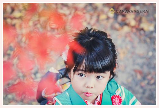 七五三の後撮り 紅葉と一緒に 7歳の女の子