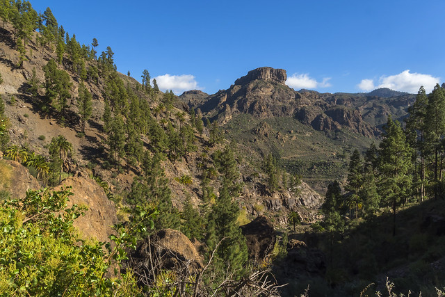 Canary islands gran canaria winter 2018_2019 10012019 1796  Kopie