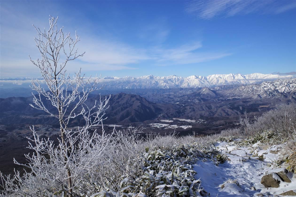 飯縄山 霧氷と北アルプスの絶景