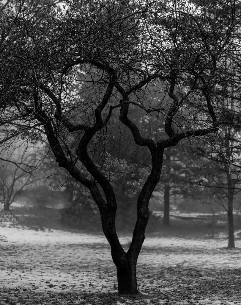 Scream Mask Tree