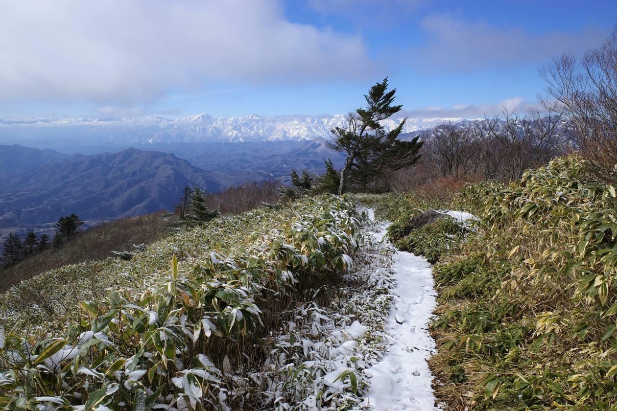飯縄山 西登山道