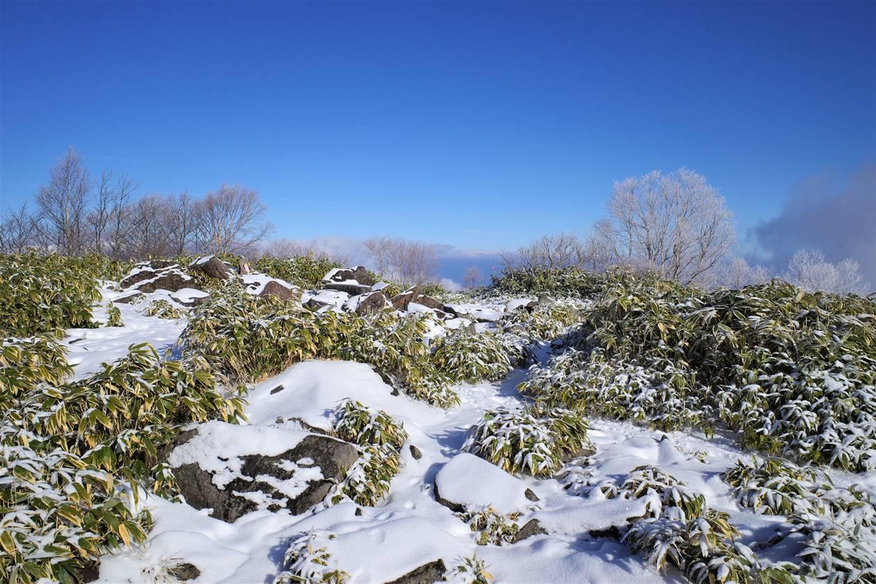 飯縄山山頂