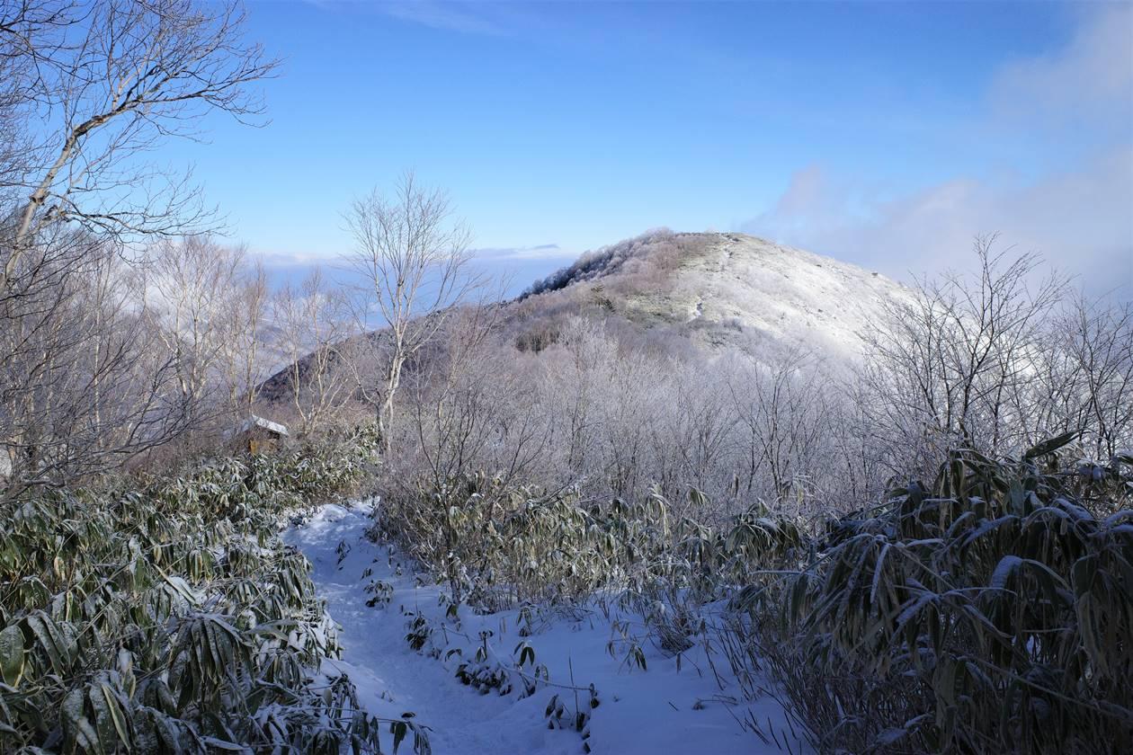 飯縄山 初冬の霧氷登山